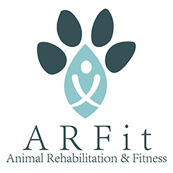 ARFit - Dog Therapy Chicago
